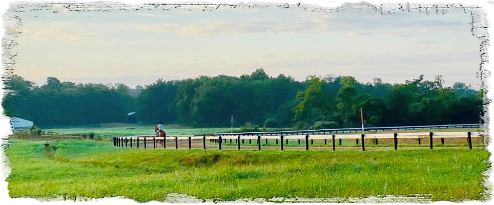 Cooney Racing Stables, LLC: Stakes Winning Thoroughbred Training - Walnut Hall Farm, Boyce VA